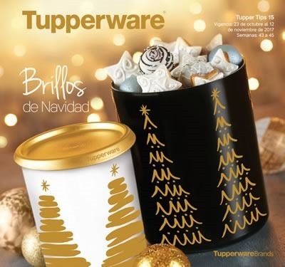 catalogo tupperware tupper tips 15 de 2017