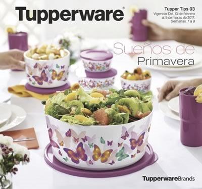 catalogo tupperware tupper tips 3 de 2017