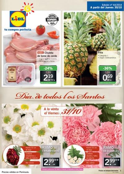 folletos de ofertas lidl 2014 todos los folletos online